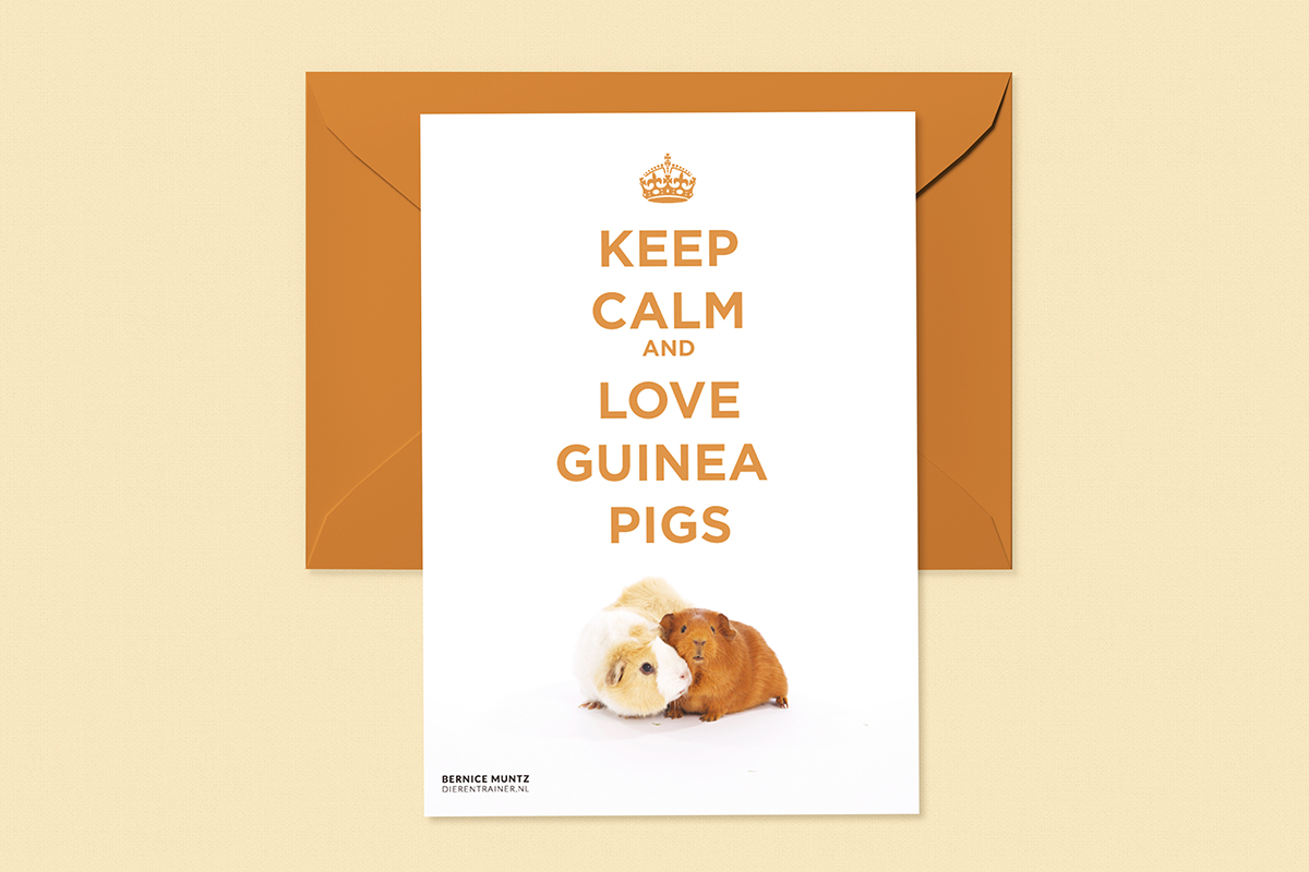 Bernice Muntz, Dierentrainer - keep calm and love guinea pigs kaart